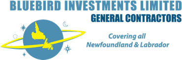 Bluebird Investments Limited